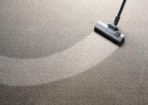 Los Angeles carpet cleaners providing expert dry carpet cleaning services