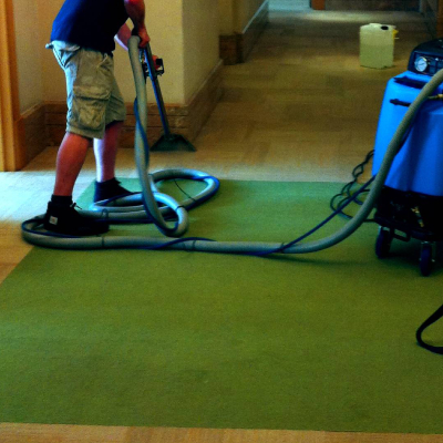 Naturally Green Carpet Cleaning Service